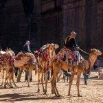Séjour au Moyen-Orient